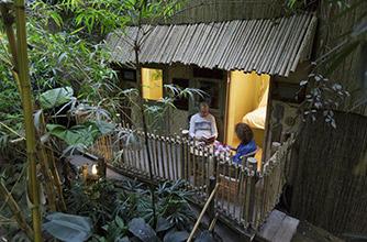 Jungle Cabana @Center Parcs Het Heijderbos